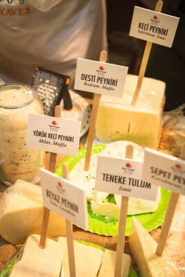Turkish cheeses on display at Slow Cheese in Bodrum, photo by Filiz Telek
