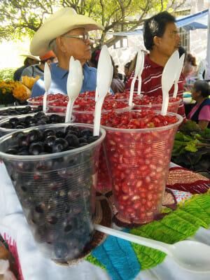 A vendor selling garambullo fruit, photo by Margret Hefner