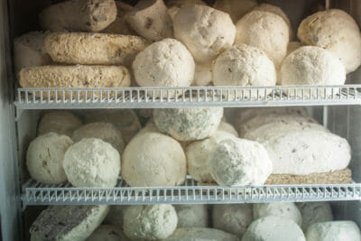 Some of Shop Bagrati's cheese, photo by Justyna Mielnikiewicz